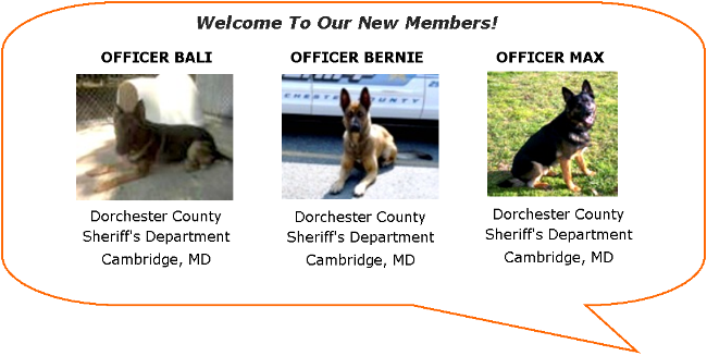 Welcome to new family member K-9s